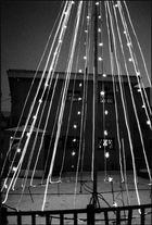 Lamp tree