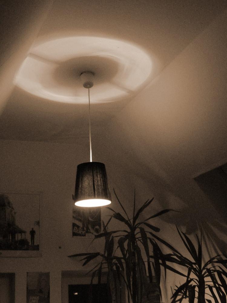 Lampe Fenster Palme und Licht