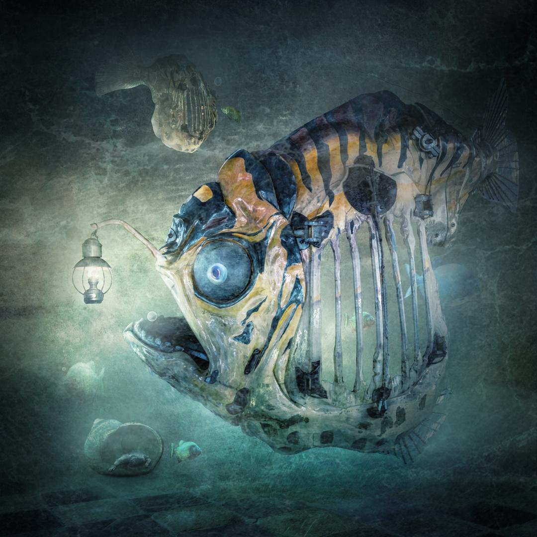 Lampenfisch Foto Bild Fotomontage Surreal Composing Bilder Auf