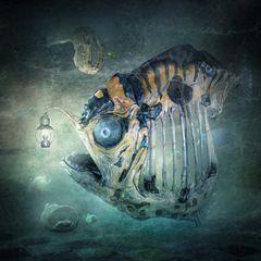 Lampenfisch