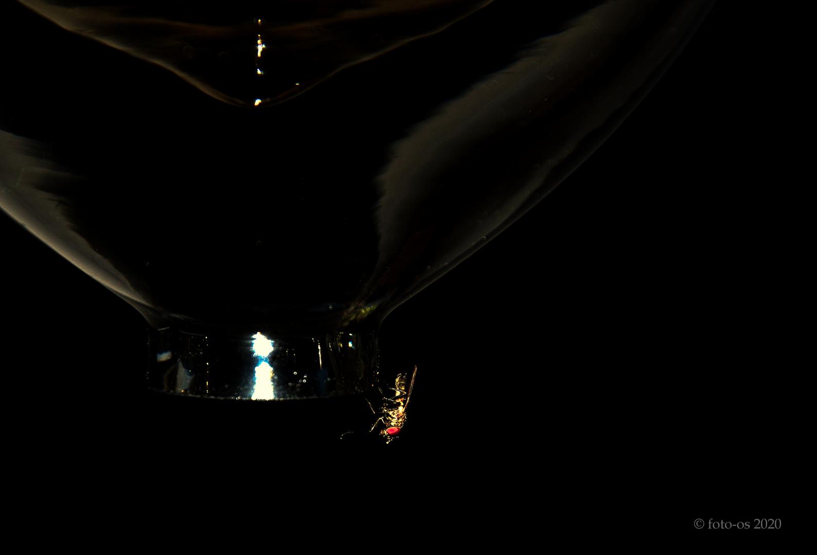 Lampenhänger
