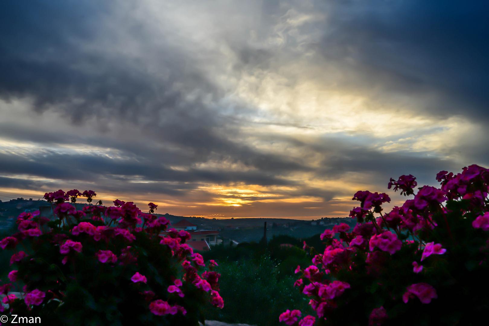 LAN_6699-14 Southern Sunset