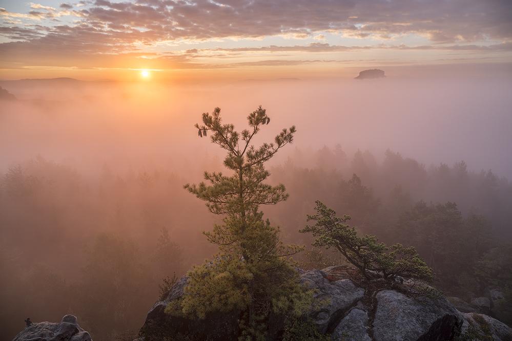 Land im Nebel