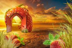 Land of strawberries1