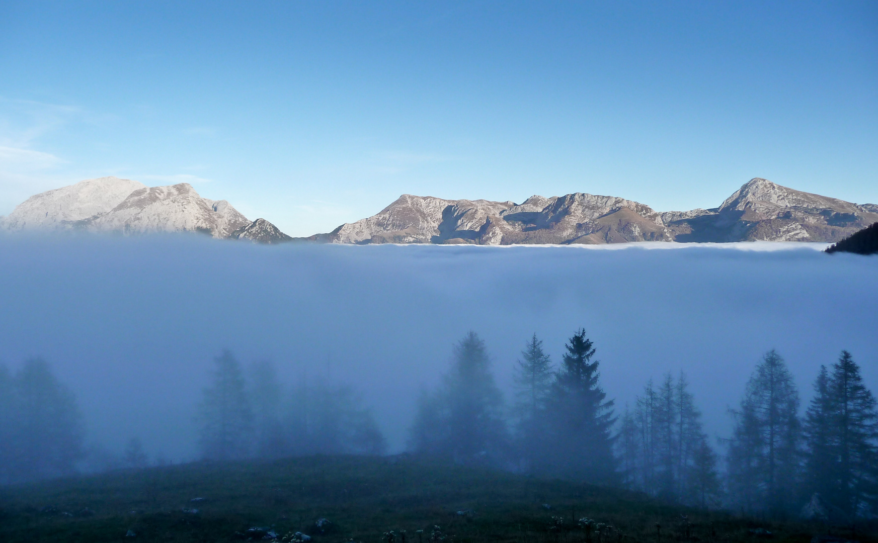 """""""Land unter"""" im Nebel"""