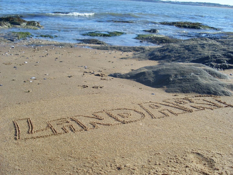 LandArt signature sable