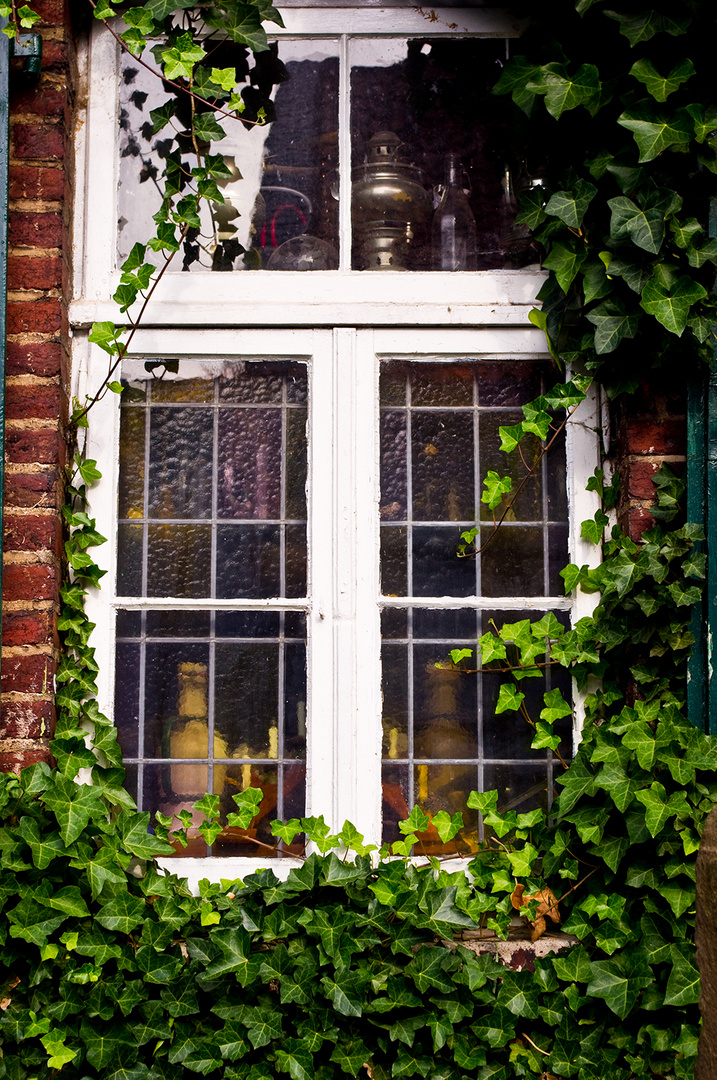 Landfenster