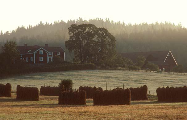 Landgut in Schweden