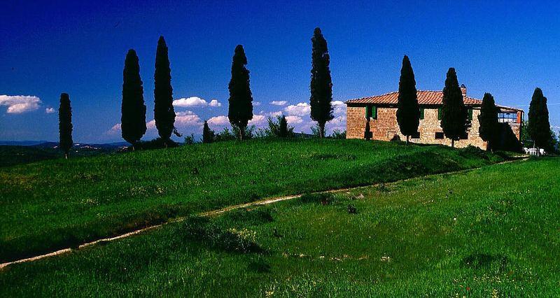 Landhaus bei Pienza II
