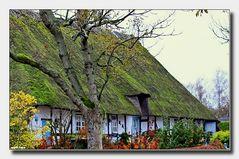 Landidylle and der Ostsee