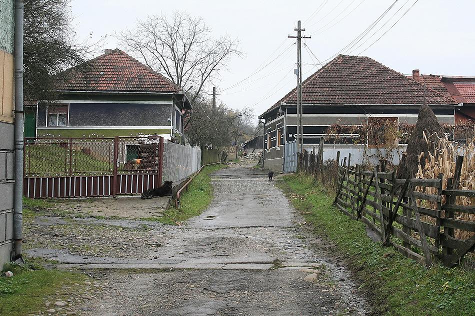 Landpartie (39)