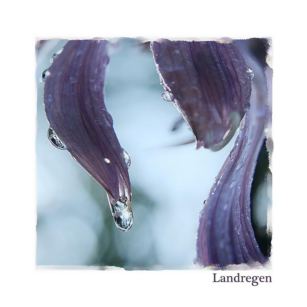 """"""" Landregen """""""