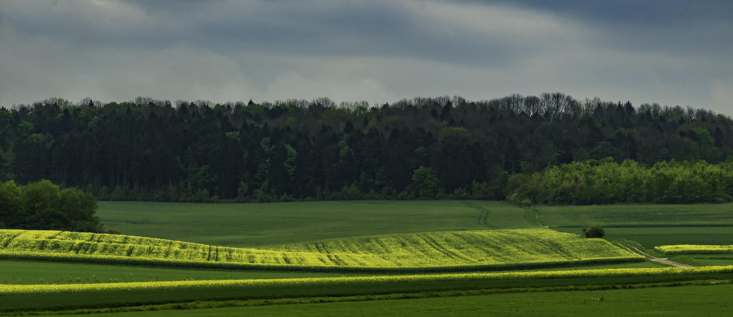 landscape 02