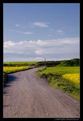 Landscape.....