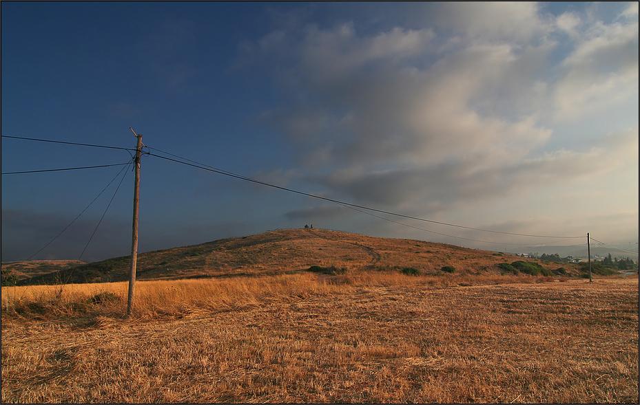 * Landscape *
