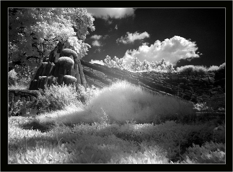 [ Landscape  ]