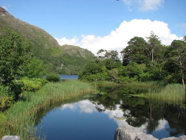 Landscape in Connemara