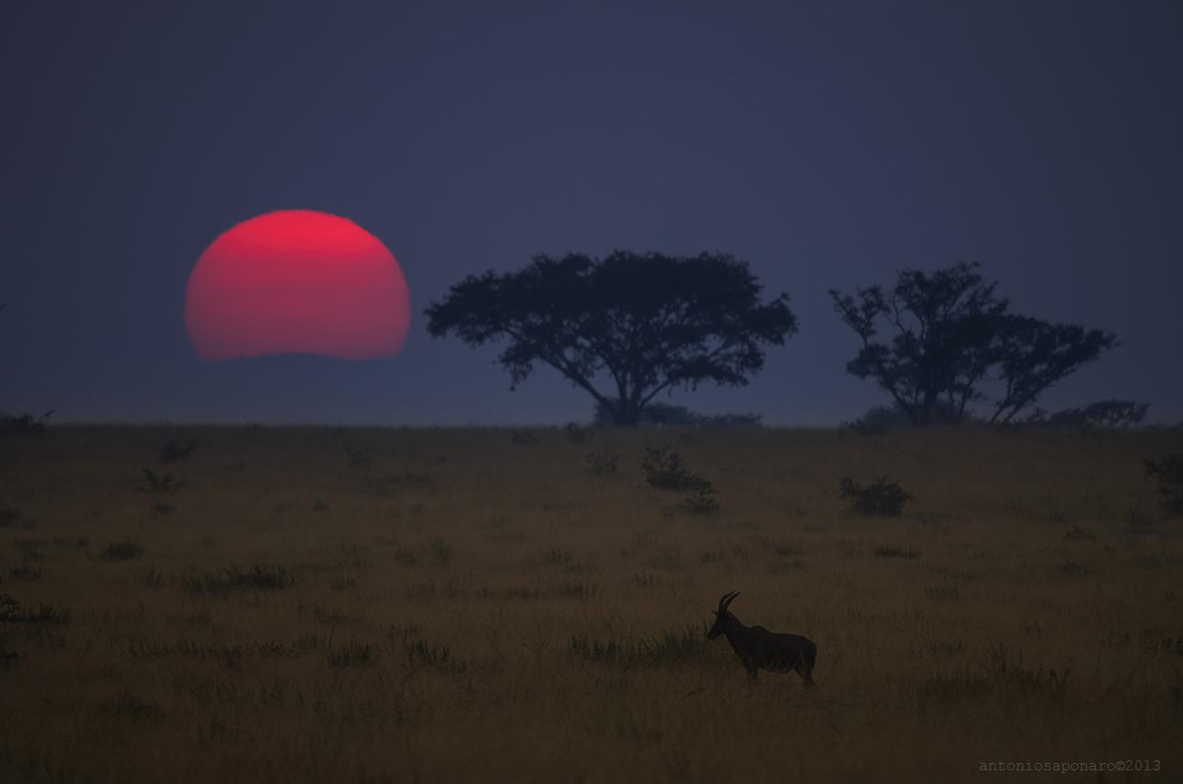 Landscape of Uganda 001