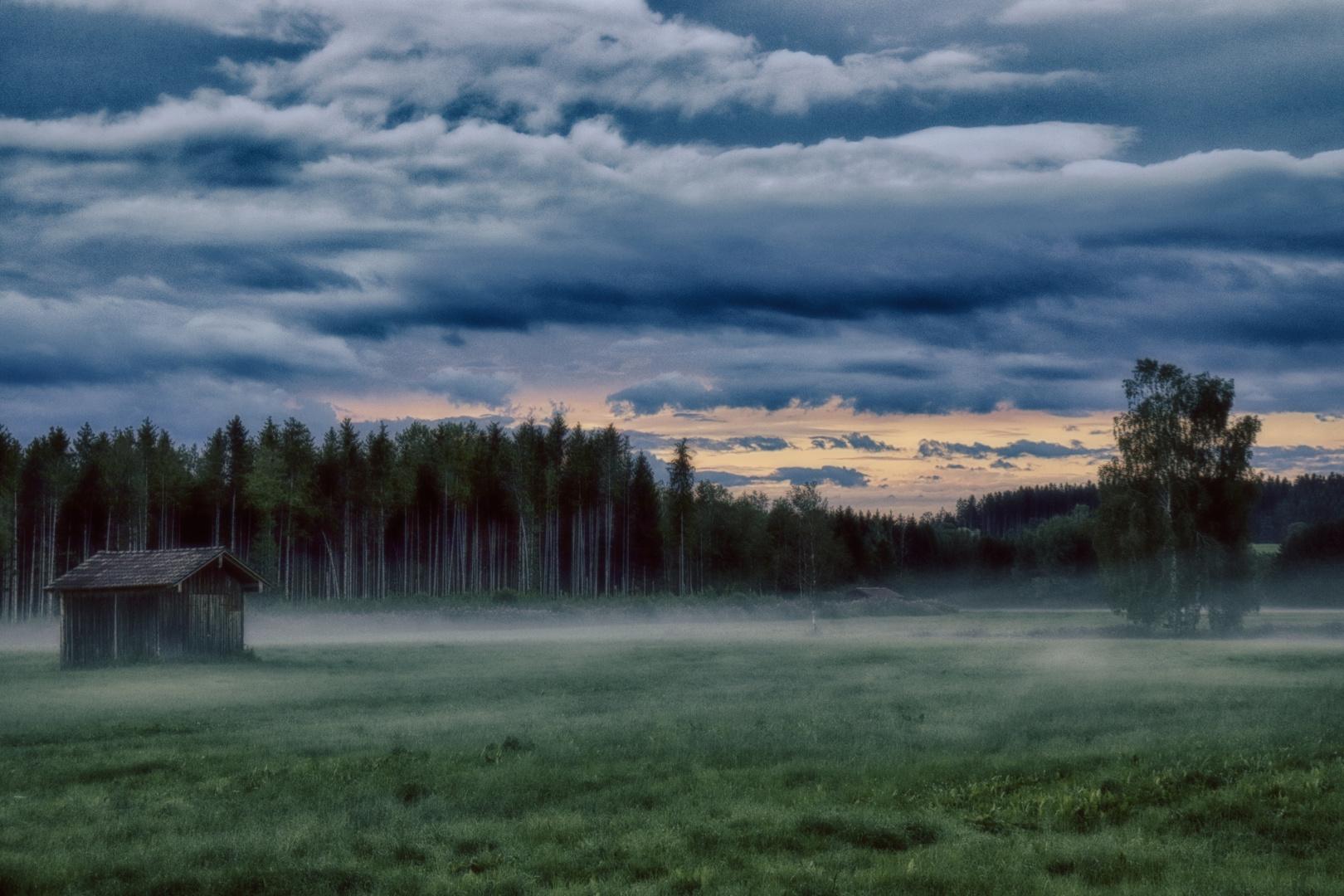 landscape_x