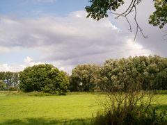 landschaft #1