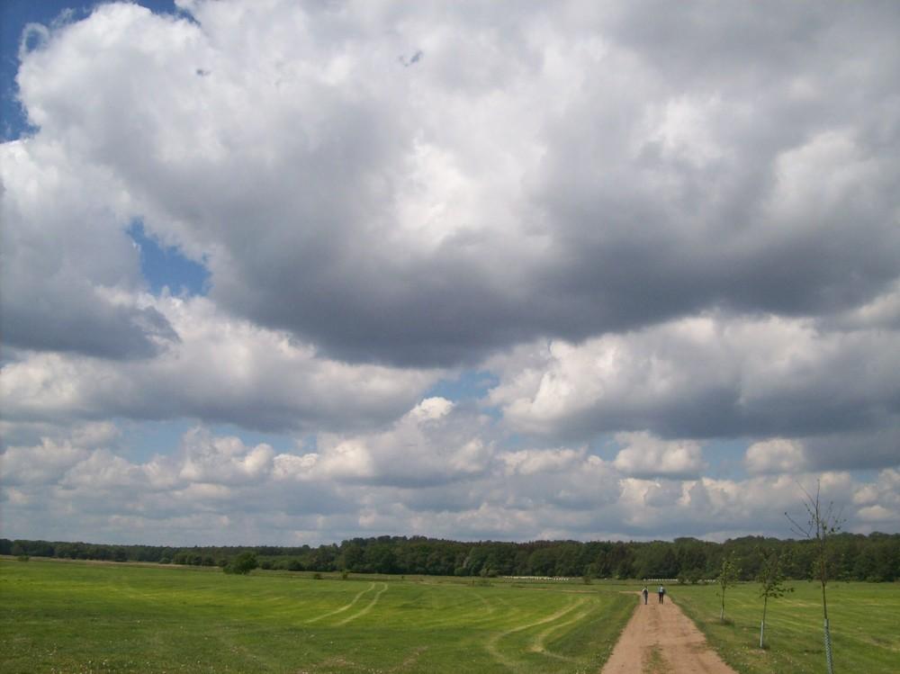 Landschaft 1989