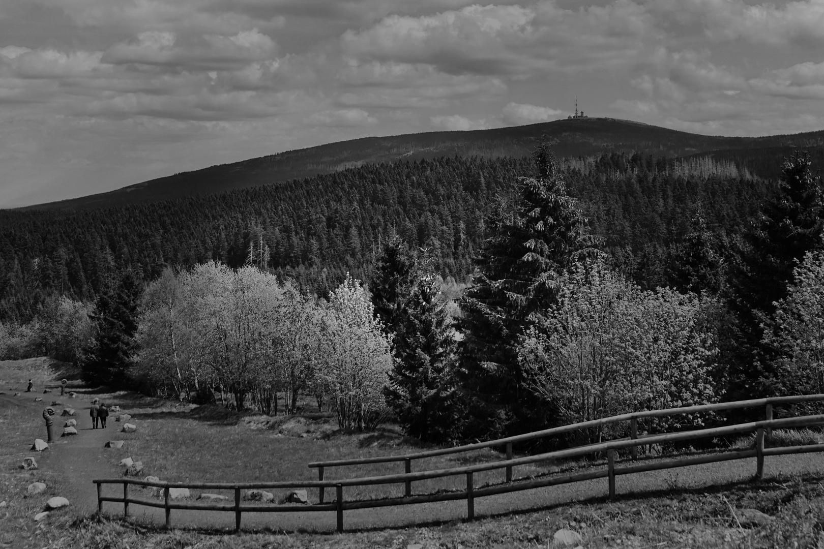 Landschaft....