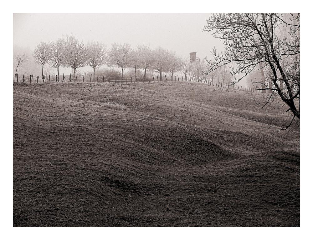 Landschaft am 01. Januar 09