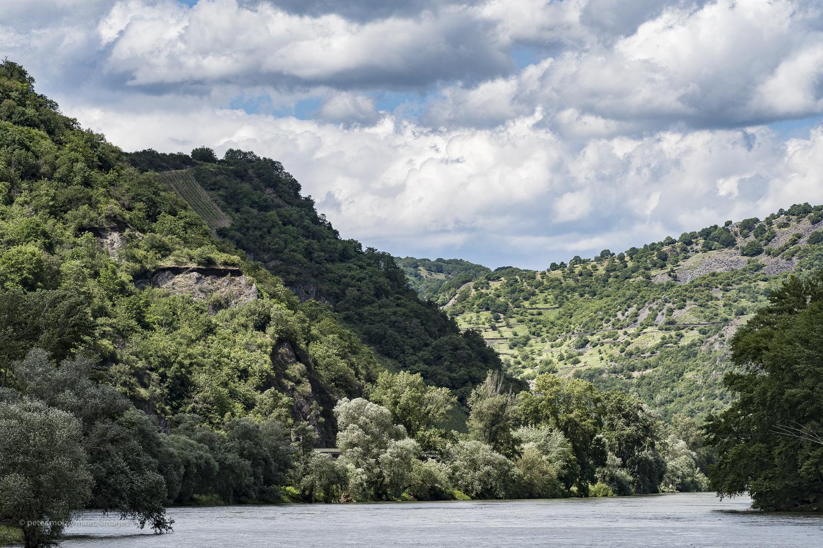 Landschaft bei Bacharach - Unterwegs im oberen Mittelrheintal