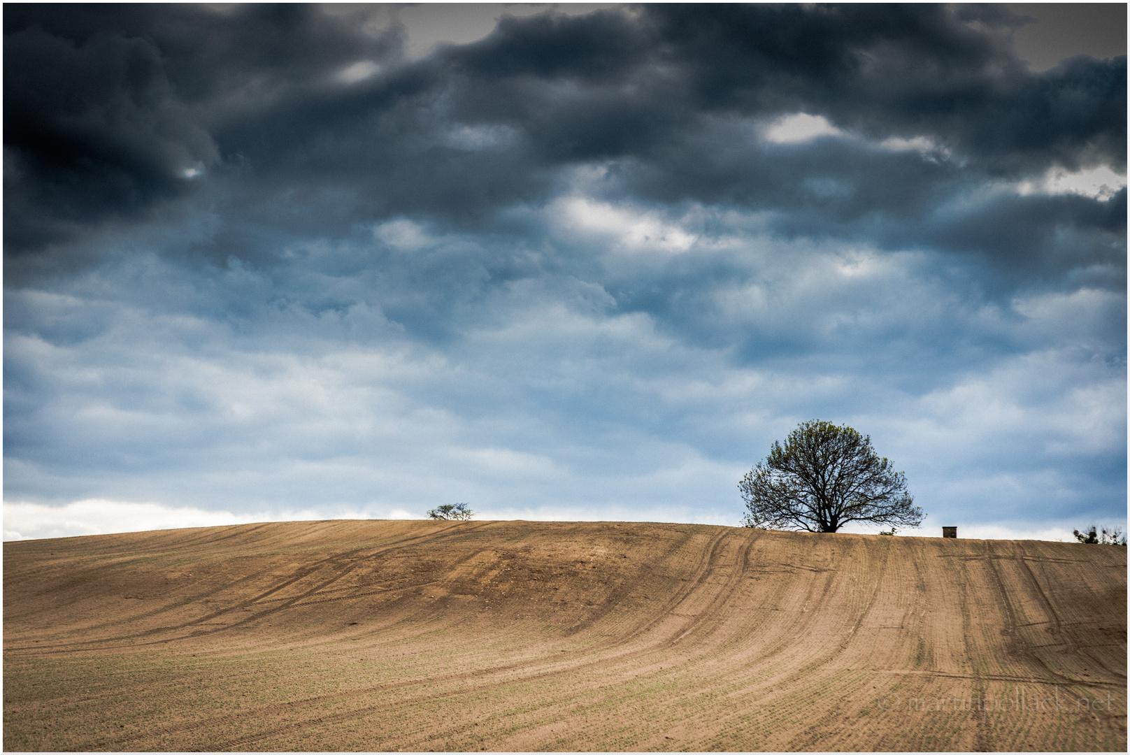 Landschaft bei Brodowin
