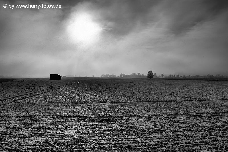 Landschaft bei Pietling im Nebel SW