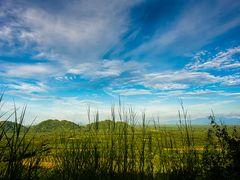 Landschaft bei Surat Thani City