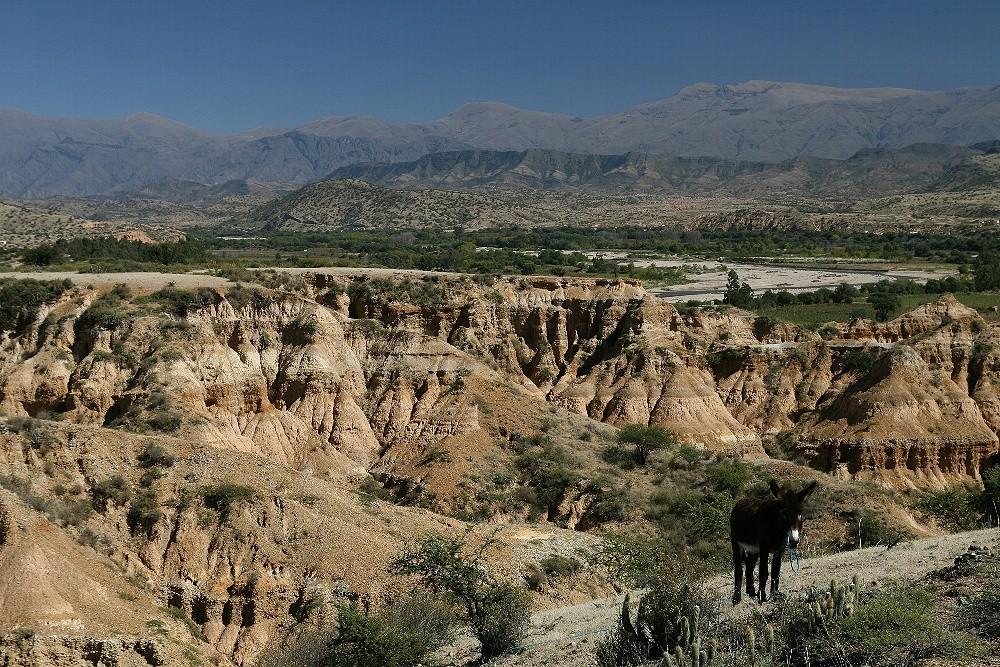 Landschaft bei Tarija