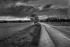 Landschaft...