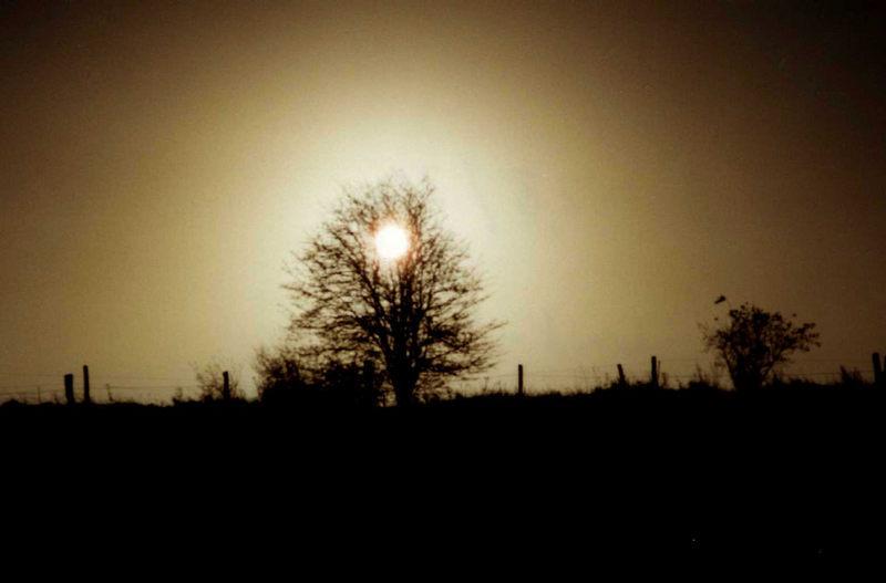 Landschaft im Gegenlicht
