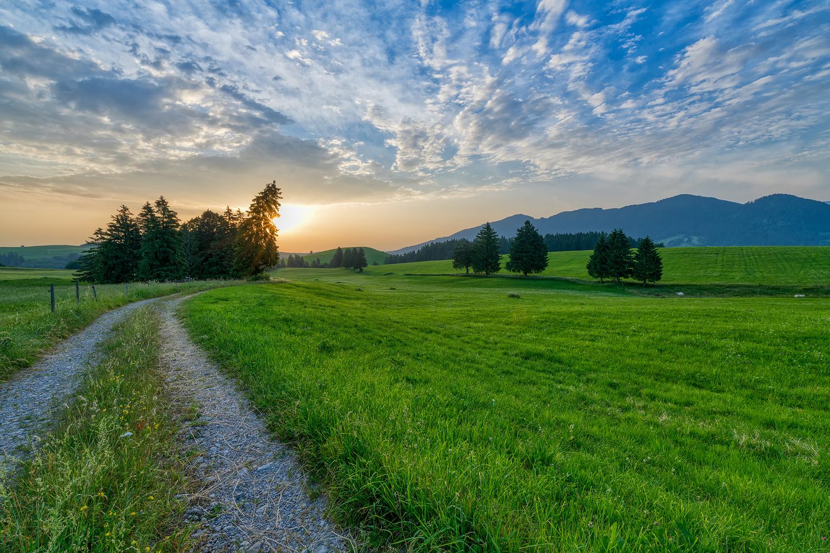 Landschaft im Ostallgäu