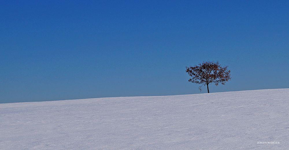 Landschaft in Blau-Weiß (2)