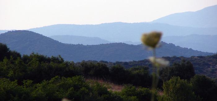 Landschaft in Ebenen