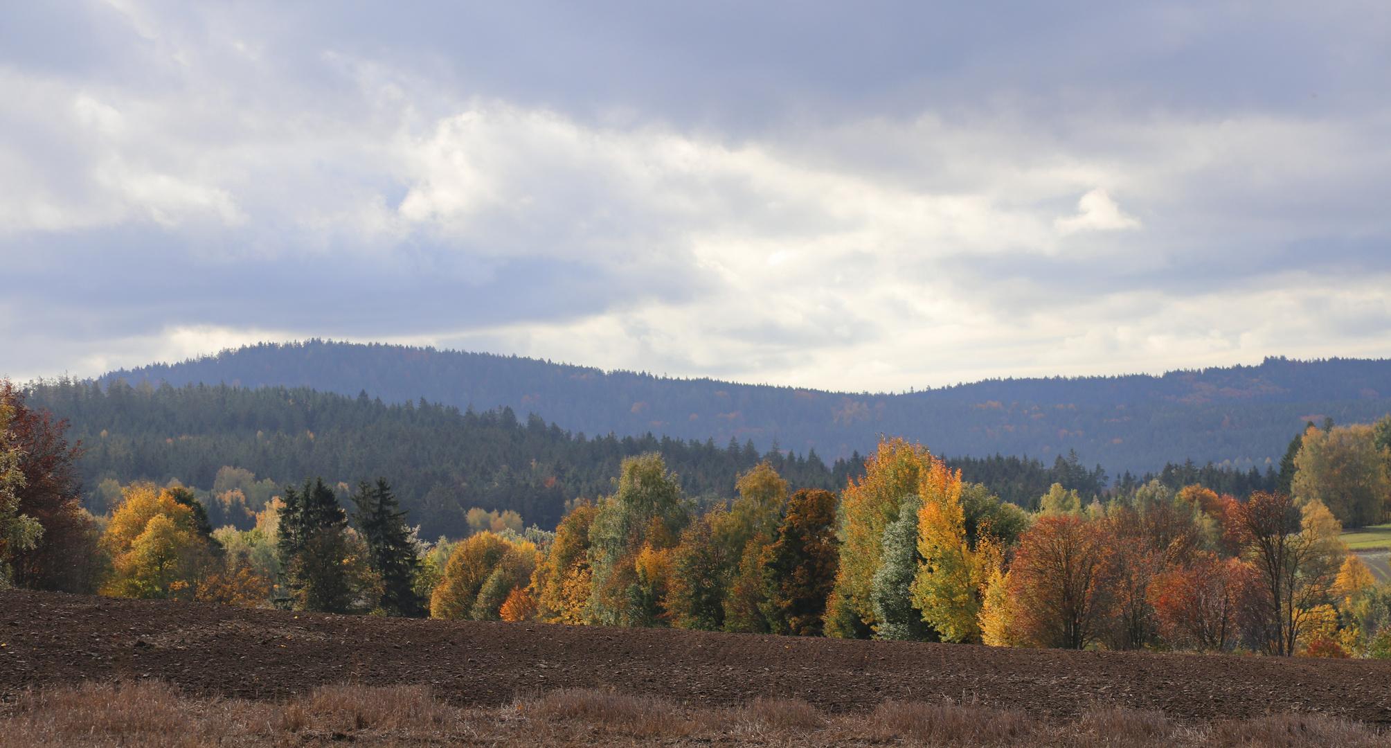 Landschaft in Herbstfarben