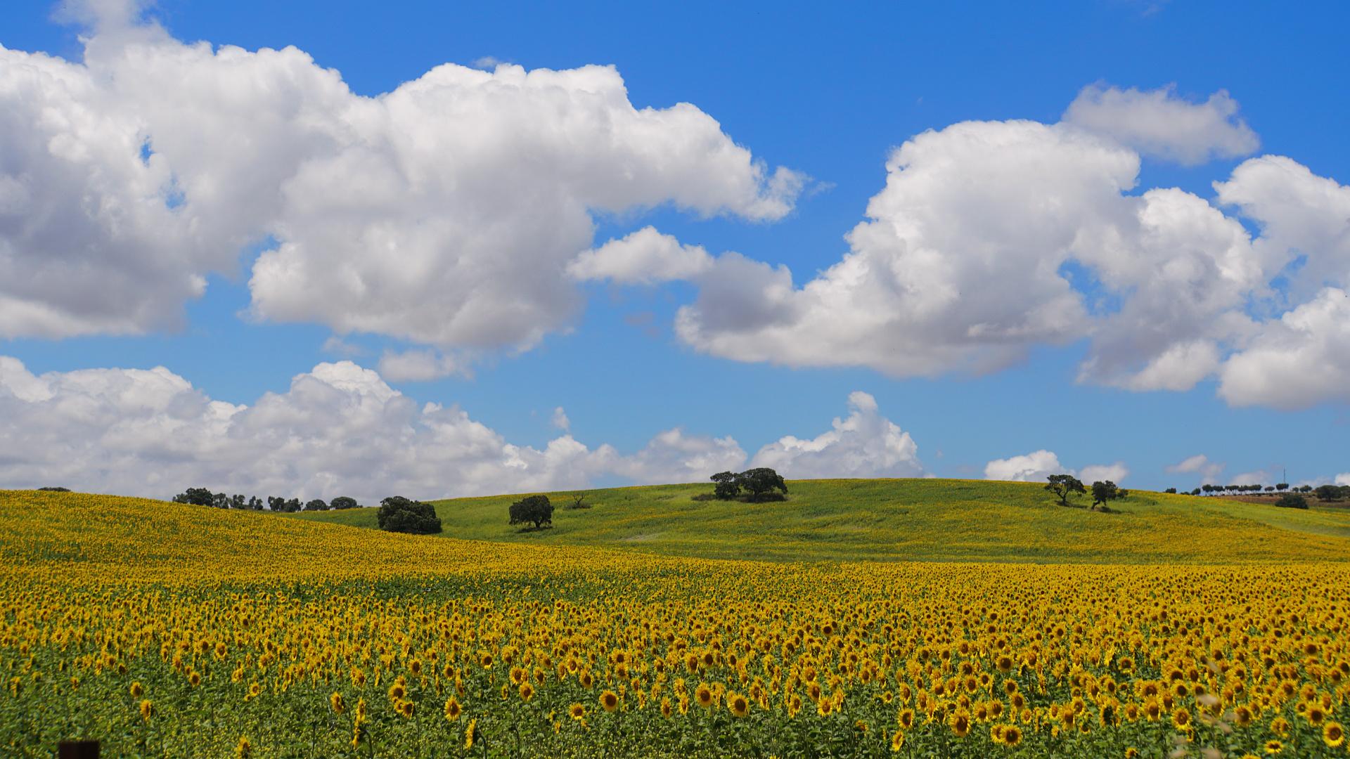 Landschaft in Südspanien