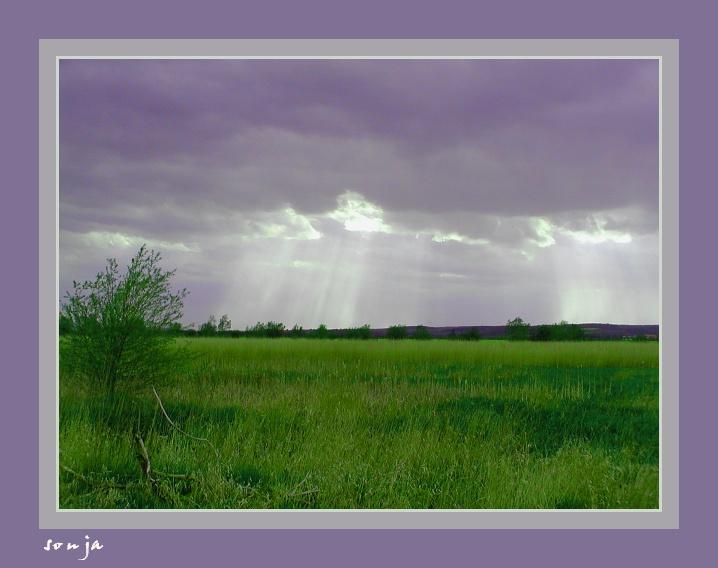 Landschaft lilagrün