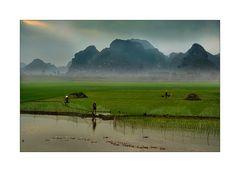 Landschaft mit Enten
