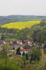 Landschaft mit Häusern und Rapsfeld