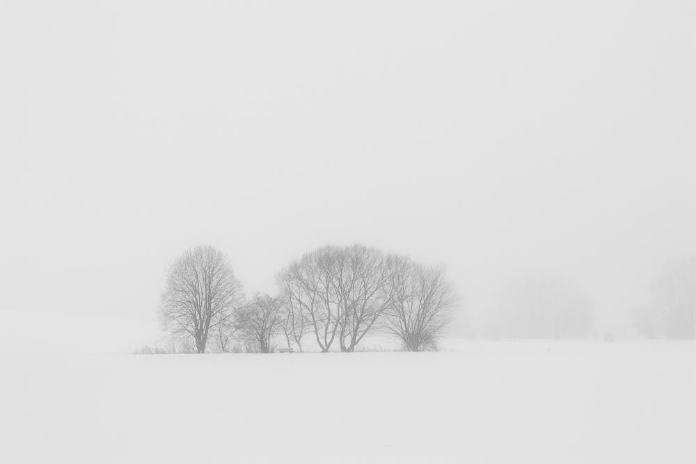 Landschaft reduziert
