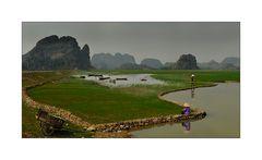 Landschaft um Ninh Binh