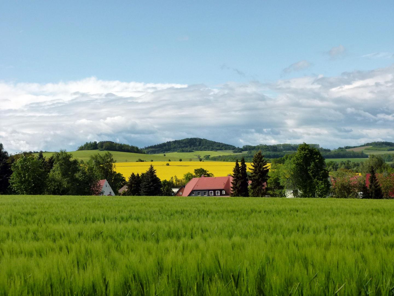 Landschaft zum Wohlfühlen
