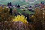 Landschaften rund um den Rotenberg