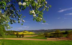 Landschaftsblick ...