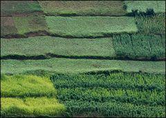 Landschaftsmozaik