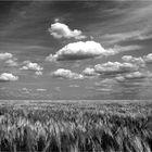 land&sky