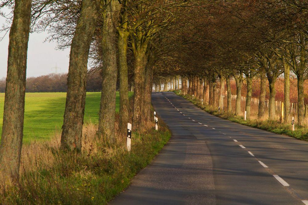 Landstraße nach Orsoy  (am Niederrhein)